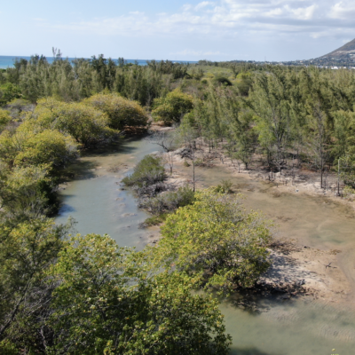 What if Mauritius Judiciary acts upon climate emergency…